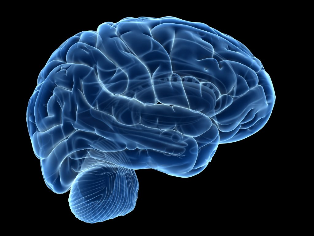 Encefalopatia da Hashimoto